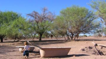 Abren inscripciones para optativa en Antropología Ambiental