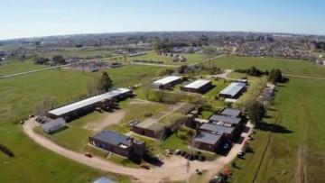 Llaman a concurso docente para la Facultad de Agronomía de Buenos Aires