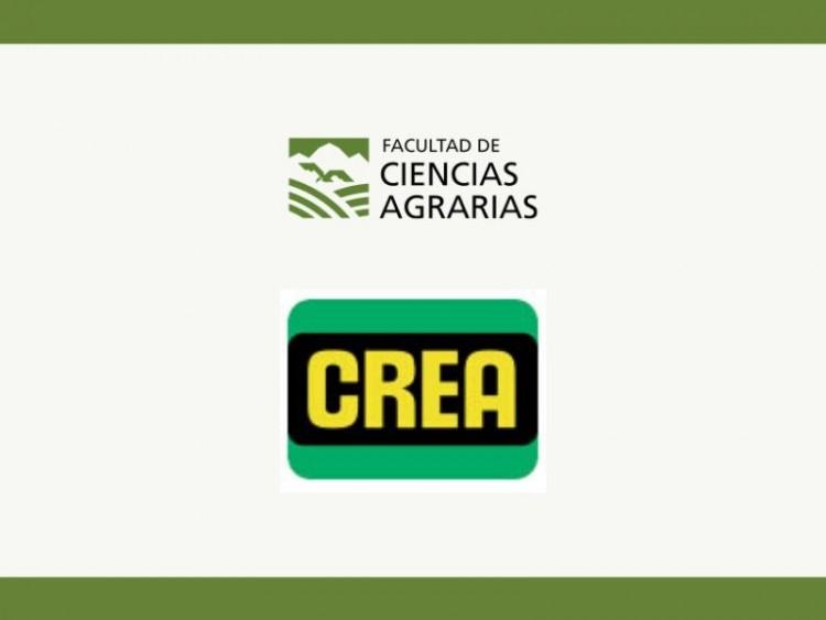 Espacio CREA - ¡Cursos, novedades y agenda!