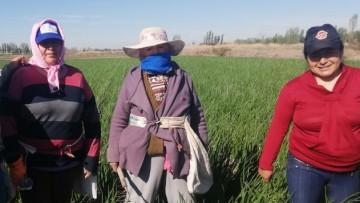 Mujeres rurales en primera persona, un homenaje a todas ellas